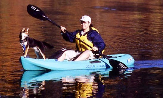 Single Sit On Top Kayak Hire In England