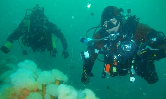 Diving Trips In Scotland