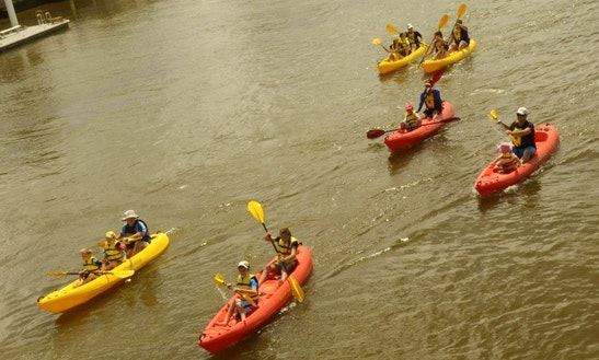 Kayak Tours And Courses In Twin Waters