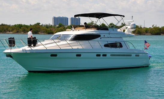 Charter 51' Sealine Sport Motor Yacht In Bal Harbour, Florida