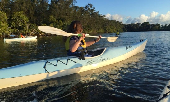 Kayak Tours In Pelican Waters, Australia