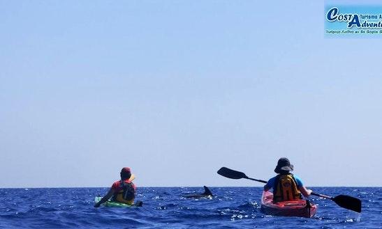 Kayak Rental & Tours In Cartagena, Spain