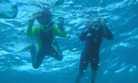Diving Trips in Nishiizu-chō