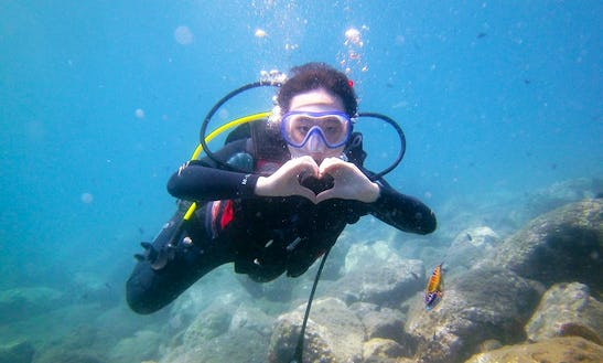 Diving Trips And Courses In Benalmádena