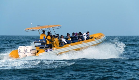 Rib Boat Rental In London, England
