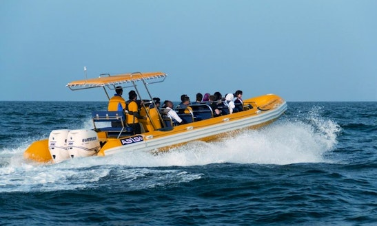 Rib Boat Rental In London, England