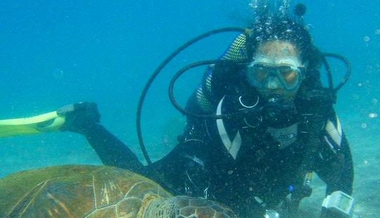 Scuba Diving Trips In Santiago Del Teide
