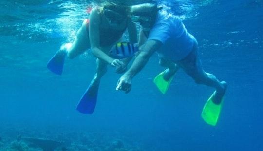 Snorkeling Trips In Kecamatan Buleleng
