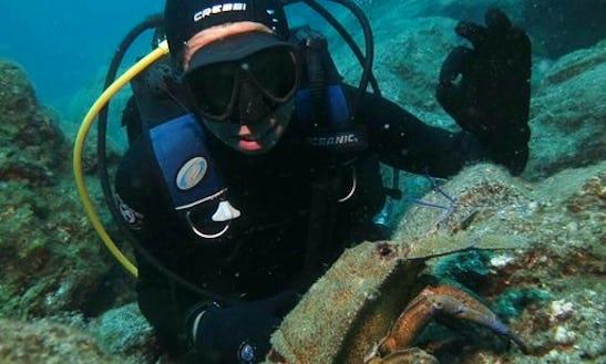 Scuba Diving In Puerto Calero