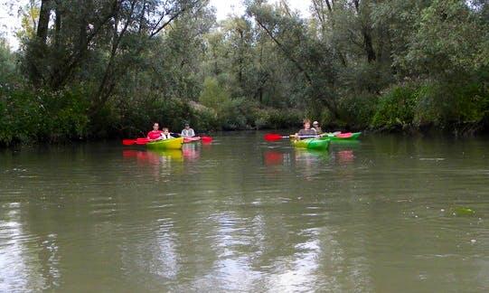 Single Kayak Trip in search of Beavers in Dordrecht