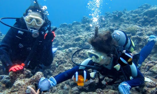 Diving Trips In Naha-shi