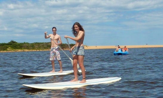 Paddle Board Hire And Lesssons In Avoca Beach