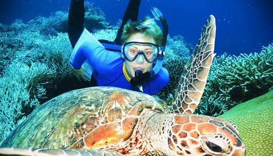Diving Trips In Craiglie