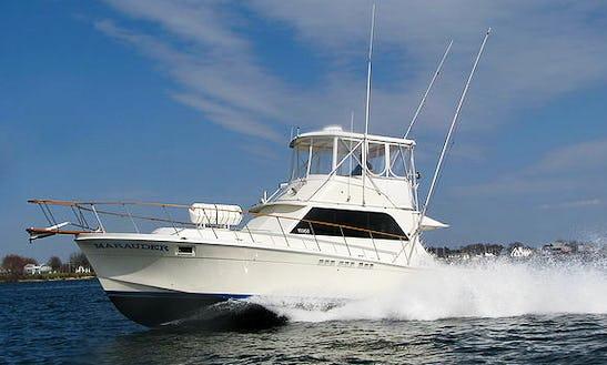 42' Sport Fisherman Fishing Charters In 1 Solomons Island, Maryland United States