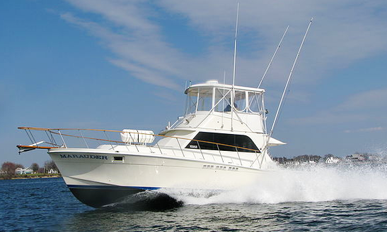 42' Sport Fisherman Fishing Charters In 1 Solomons Island, Maryland United States