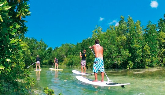 Stand Up Paddleboard Tour And Rental In Paje