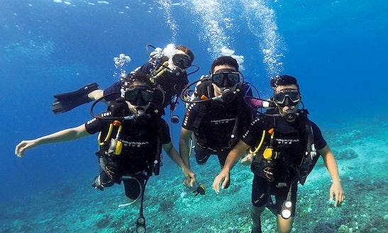 Diving Tour In Kuala Lumpur