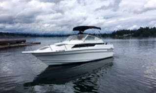 24ft Cuddy Cabin Boat Rental in Bellevue