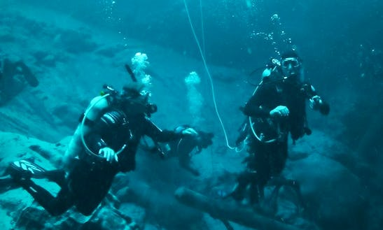 Diving Trips And Courses In Alachua, Florida