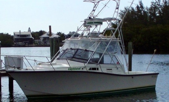 Sport Fisherman Fishing Charter In Captiva, Florida