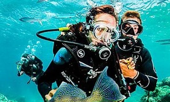 Diving Courses In Maspalomas