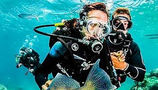 Diving Courses In Maspalomas