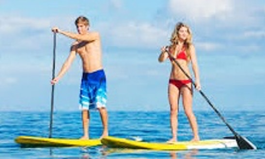 Paddleboard Rental In Saint Pete Beach, Florida