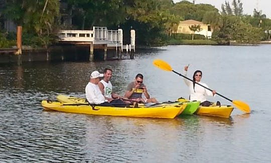See Local Wildlife on Guided Kayak Tours to Fort Lauderdale Beach, Florida