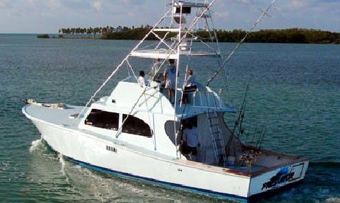 "Enjoy Fishing in Islamorada, Florida On 48ft ""Predator"" Sports Fisherman"