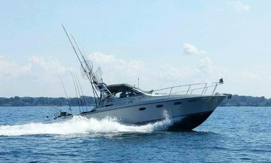33' Trojan International Fishing Charter