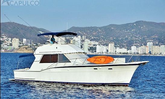 50' Sportcruiser Motor Yacht Charter In Guerrero, Mexico