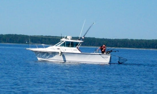 Enjoy Fishing In Ellison Bay, Wisconsin With Captain Don