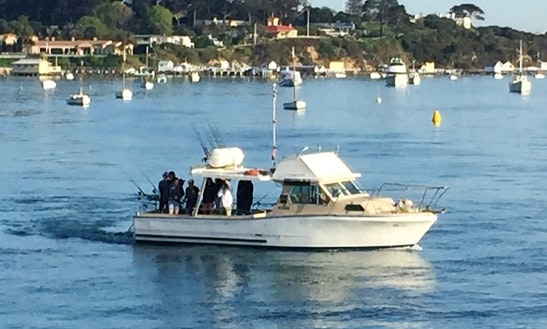 Enjoy Fishing With Captain Chris In Blairgowrie, Victoria
