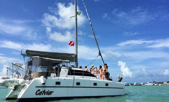 Explore Miami, Florida On 35ft 'catviar' Sailing Catamaran