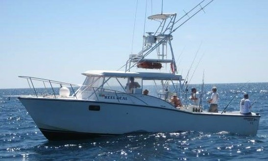 Enjoy Fishing In Clearwater Beach, Florida With Captain Tucker