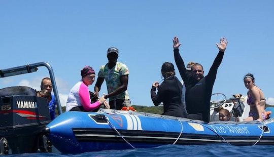 Scuba Diving In Ponta Do Ouro, Mozambique