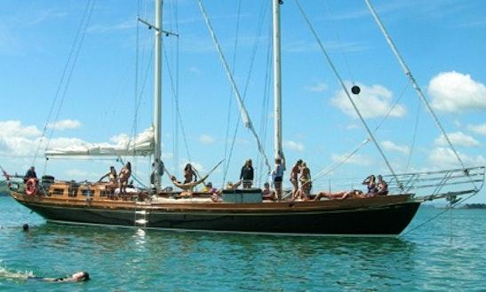 Sail Waitemata Harbour, Auckland On