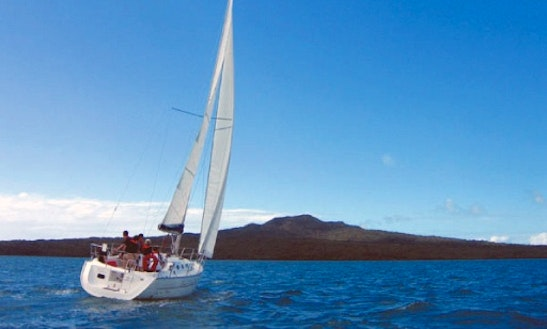 Exclusive Skippered Charter On 32ft 'french Connection' Sailboat In Auckland, New Zealand
