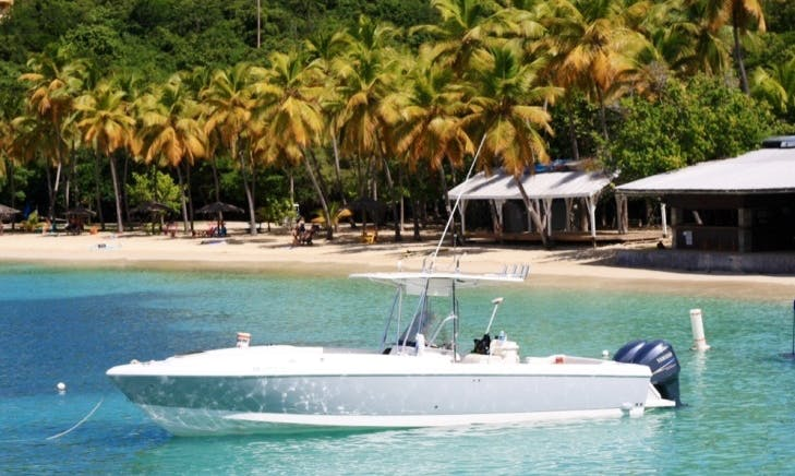 32ft Intrepid Charters USVI and BVI Day Trips!