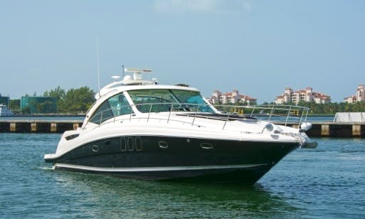 "Charter 48ft SeaRay ""Pier Pressure"" Motor Yacht in Miami, Florida"