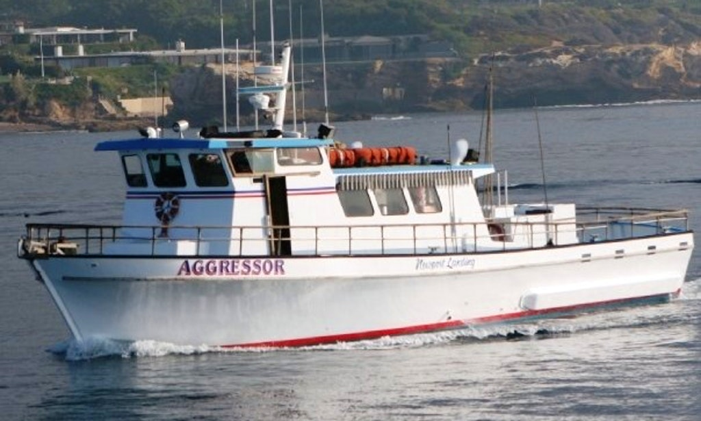Charter Boat Fishing Newport Beach Ca