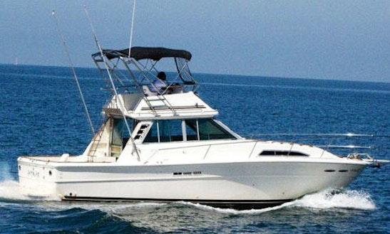 40' Searay Fishing Yacht In Puerto Vallarta