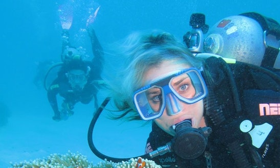 Enjoy Diving Trips And Courses In Green Island, Australia
