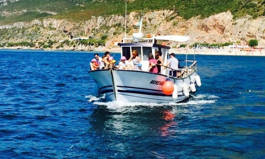 Private Dolphin Watching With Lunch Onboard Tour In Setubal, Portugal