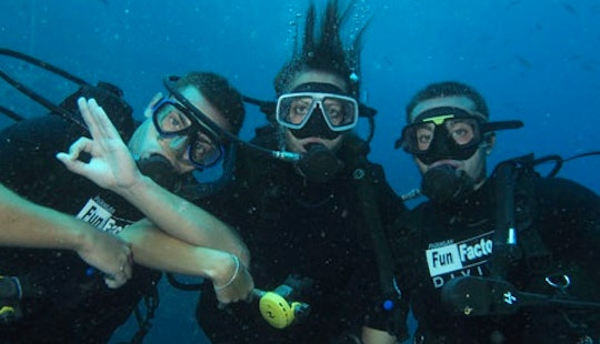 Enjoy Diving Trips And Courses In Ko Phangan, Thailand