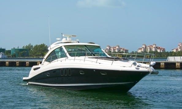48' SeaRay Motor Yacht Charter in Miami, Florida