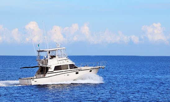 38' Bertram Sport Fishing Yacht In Puerto Vallarta, Mexico