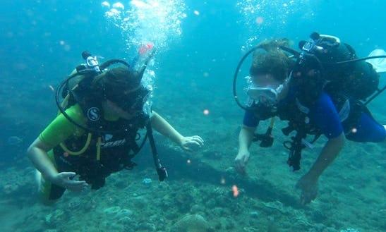 Enjoy Diving Courses In Benoni, Gauteng