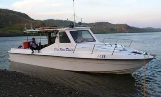 Enjoy Diving Courses At Ambon Island, Indonesia