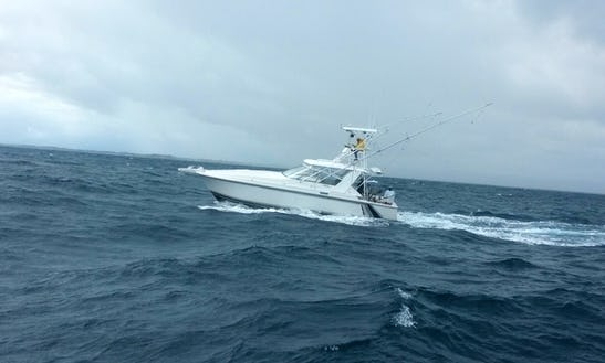 Sport Fisherman Fishing Charter In Carolina, Puerto Rico
